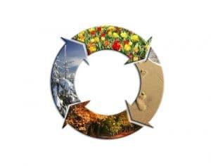 Immagine di gomma 4 stagioni